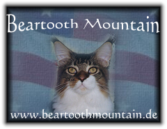 beartoothmountain